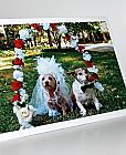 Dog Lovers Wedding